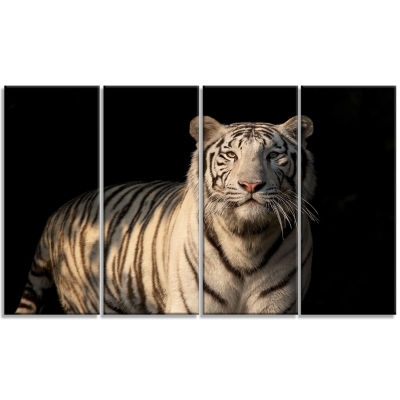 Designart White Bengal Tiger On Black Abstract Canvas Art Print - 4 Panels