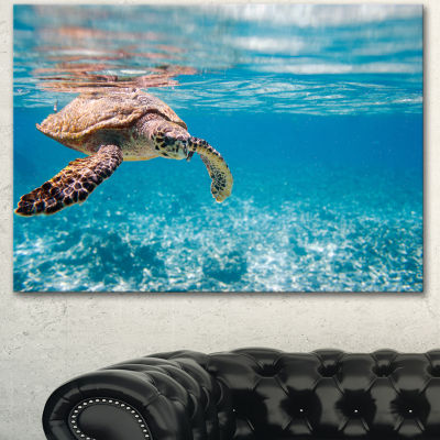 Designart Hawksbill Sea Turtle Abstract Canvas ArtPrint