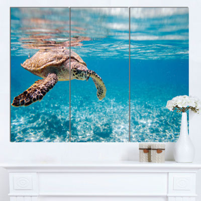 Designart Hawksbill Sea Turtle Abstract Canvas ArtPrint - 3 Panels