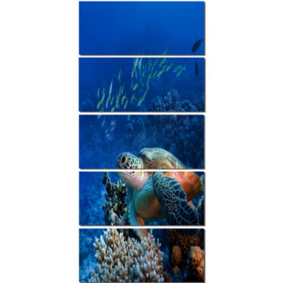 Designart Sea Turtle Underwater Abstract Canvas Art Print - 5 Panels