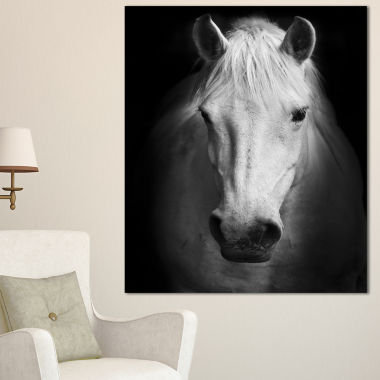 Designart White Horse Black And White Animal Canvas Art Print