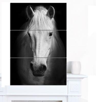Designart White Horse Black And White Animal Canvas Art Print - 3 Panels