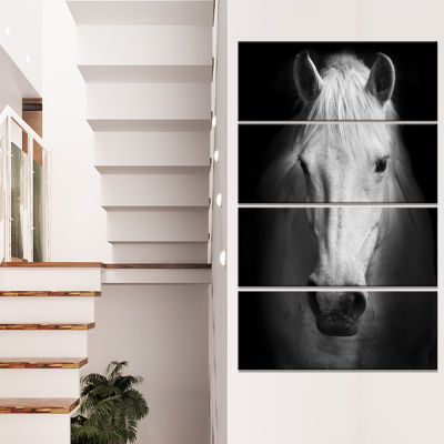 Designart White Horse Black And White Animal Canvas Art Print - 4 Panels