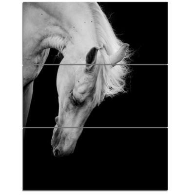 Design Art White Horse In Black Background AnimalCanvas Art Print - 3 Panels