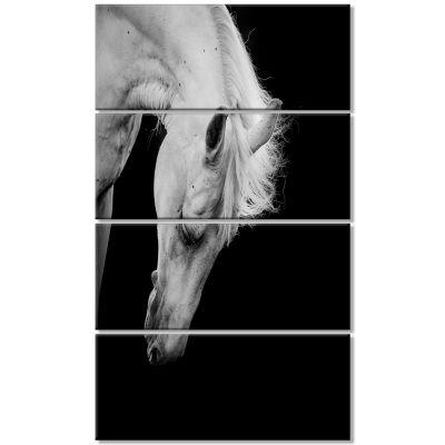 Designart White Horse In Black Background AnimalCanvas Art Print - 4 Panels