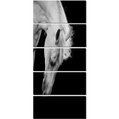 Designart White Horse In Black Background AnimalCanvas Art Print - 5 Panels