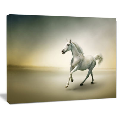 Designart White Horse In Motion Animal Canvas ArtPrint