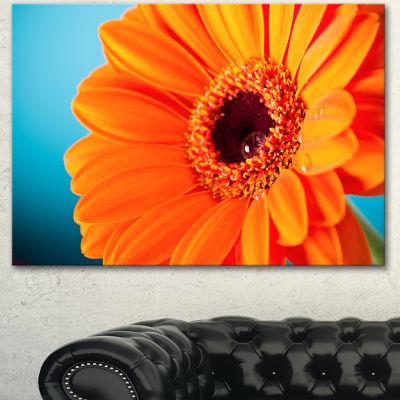 Designart Orange Daisy Gerbera Flower Close Up Canvas Wall Artwork