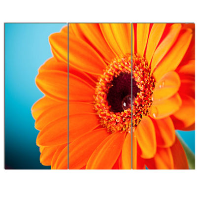 Designart Orange Daisy Gerbera Flower Close Up Canvas Wall Artwork - 3 Panels