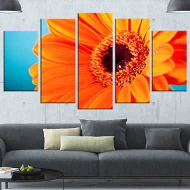 Design Art Orange Daisy Gerbera Flower Close Up Canvas Wall Artwork - 5 Panels