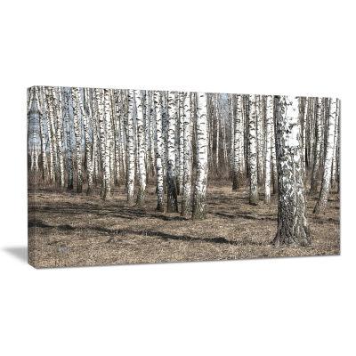 Design Art Beautiful Dense Birch Forest View Modern Forest Canvas Art