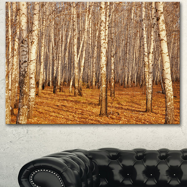Designart Dense Birch Forest In The Fall Forest Canvas Art Print