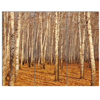Designart Dense Birch Forest In The Fall Forest Canvas Art Print - 3 Panels