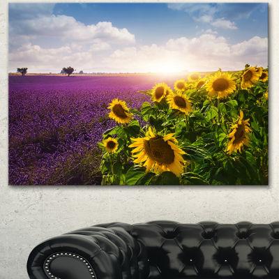Designart Lavender And Sunflower Fields Canvas Art Print