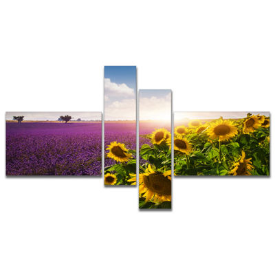 Designart Lavender And Sunflower Fields Canvas ArtPrint - 4 Panels