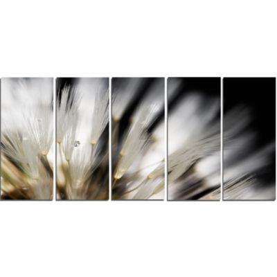 Designart Dandelion Close Up With Dewdrops FlowersCanvas Wall Art work - 5 Panels