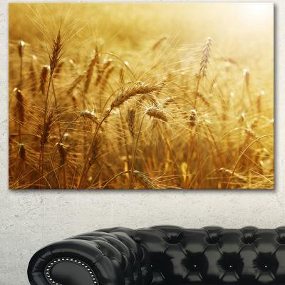 Designart Golden Wheat Field Landscape Canvas Art