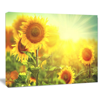 Designart Sunflowers Blooming On The Field AnimalCanvas Art Print