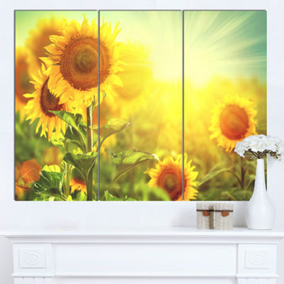 Designart Sunflowers Blooming On The Field AnimalCanvas Art Print - 3 Panels