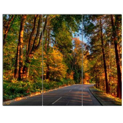 Designart Road Through Lit Up Fall Forest Landscape Canvas Art - 3 Panels