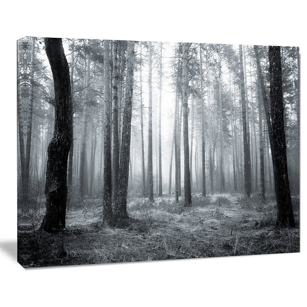 Designart Black And White Foggy Forest Canvas ArtPrint