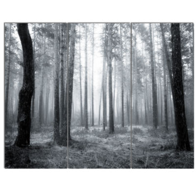 Designart Black And White Foggy Forest Canvas ArtPrint - 3 Panels