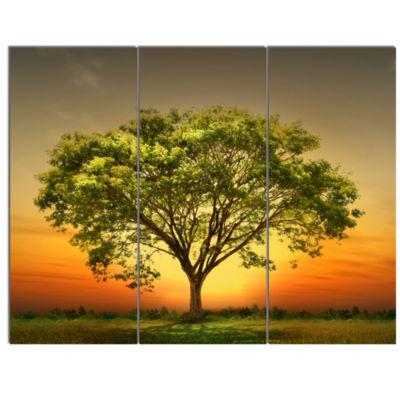 Designart Green Tree Against Setting Sun Trees Canvas Art Print - 3 Panels