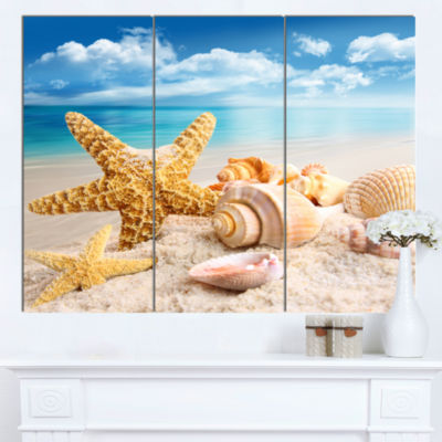 Designart Starfish And Seashells On Beach SeashorePhoto Canvas Art Print - 3 Panels