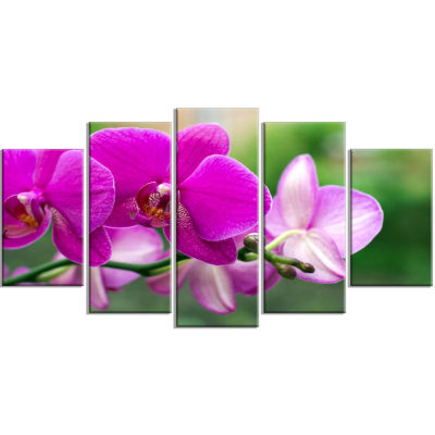 Design Art Beautiful Orchid Flowers On Green (373) Canvas Art Print - 5 Panels