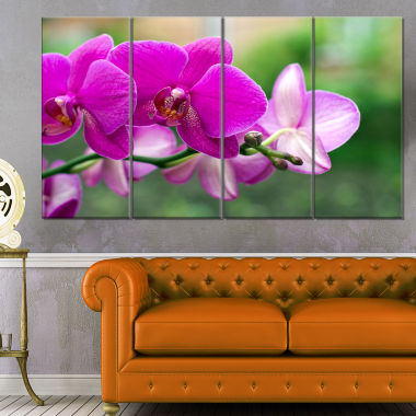 Design Art Beautiful Orchid Flowers On Green Canvas Art Print - 4 Panels