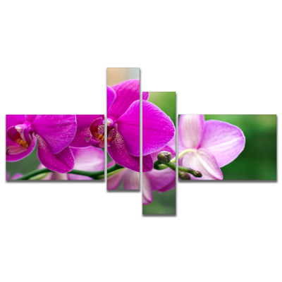 Designart Beautiful Orchid Flowers On Green CanvasArt Print - 4 Panels
