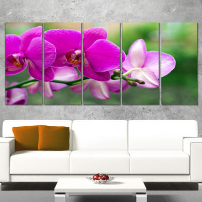 Designart Beautiful Orchid Flowers On Green CanvasArt Print - 5 Panels