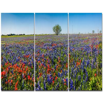Designart Texas Wildflowers Field Landscape Canvas Art Print - 3 Panels