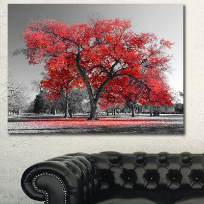Designart Big Red Tree On Foggy Day Landscape Canvas Art Print