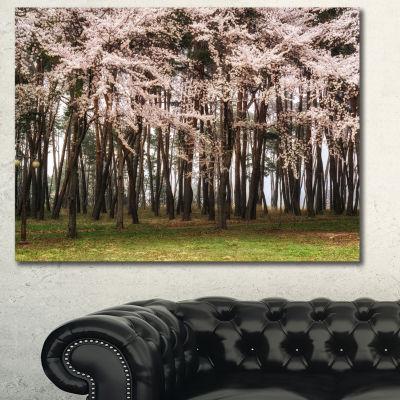 Designart Cherry Blossoms In Pine Tree LandscapeCanvas Art Print - 3 Panels