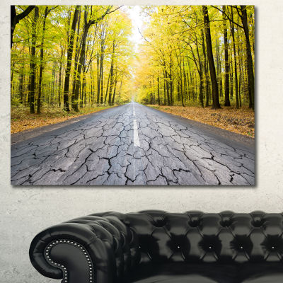Designart Cracked Road In The Forest Landscape Canvas Art Print
