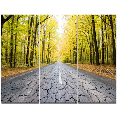 Designart Cracked Road In The Forest Landscape Canvas Art Print - 3 Panels