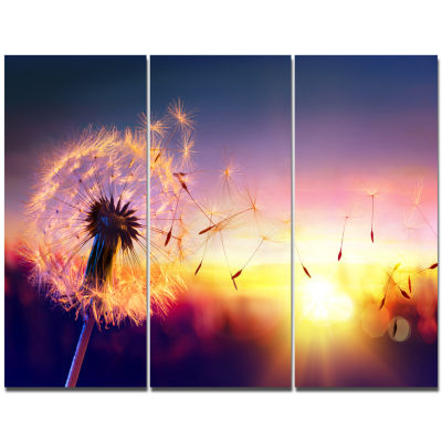 Designart Dandelion At Sunset Freedom To Wish Abstract Wall Art Canvas - 3 Panels