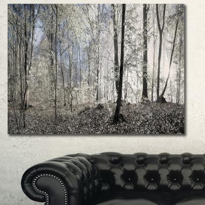 Designart Dark Morning In Forest Panorama Landscape Canvas Art Print