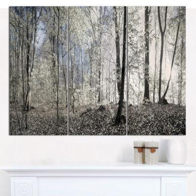 Designart Dark Morning In Forest Panorama Landscape Canvas Art Print - 3 Panels