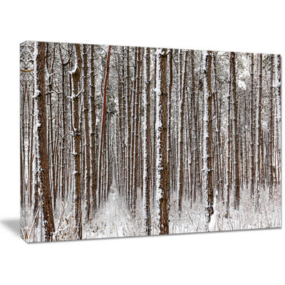 Designart Dense Pine Forest In Winter Landscape Canvas Art Print