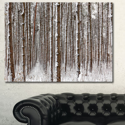 Designart Dense Pine Forest In Winter Landscape Canvas Art Print - 3 Panels