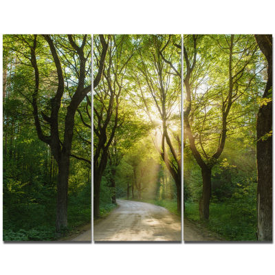 Designart Evening In Green Forest Landscape CanvasArt Print - 3 Panels