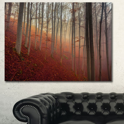 Designart Foggy Day In Enchanted Forest LandscapeCanvas Art Print - 3 Panels