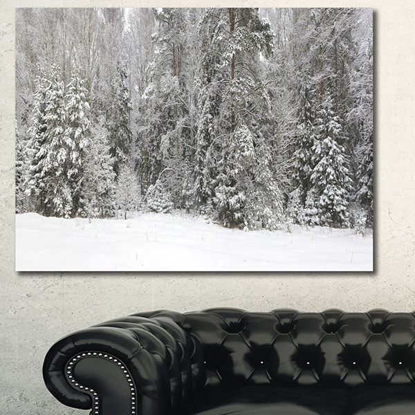 Designart Foggy Winter Forest Panorama Landscape Canvas Art Print