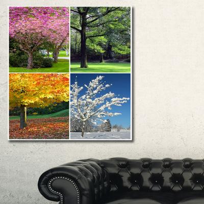 Designart Four Seasons Trees Collage Landscape Canvas Art Print