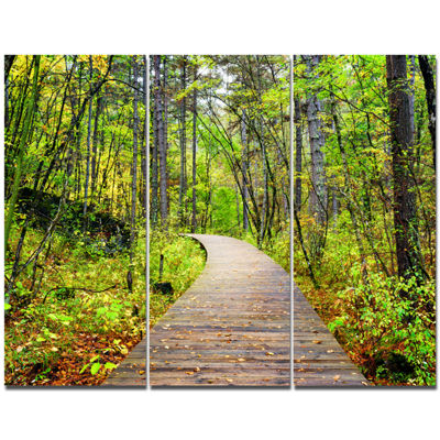 Designart Wooden Boardwalk Across Forest LandscapeWall Art Canvas - 3 Panels