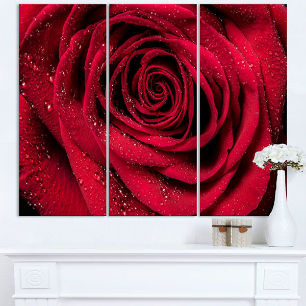 Designart Red Rose Petals With Rain Droplets Floral Art Canvas Print - 3 Panels