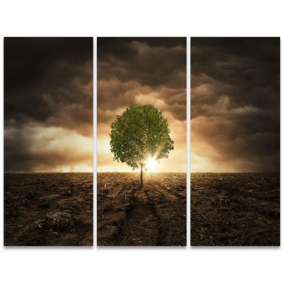 Designart Lonely Tree Under Dramatic Sky Wall Art Landscape - 3 Panels