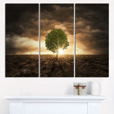 Designart Lonely Tree Under Dramatic Sky Wall ArtLandscape - 3 Panels